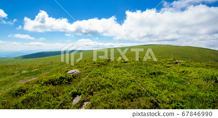 travel carpathian mountains in summer. road 67846990