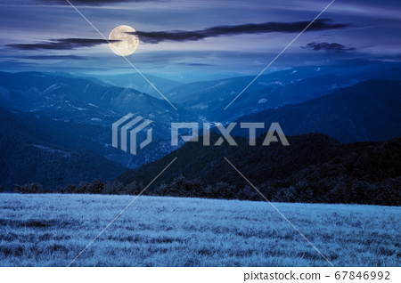 mountain landscape at night. trees on the meadow 67846992