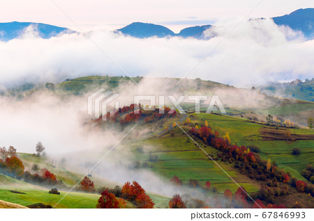 autumn sunset in mountains. tree top among the fog 67846993