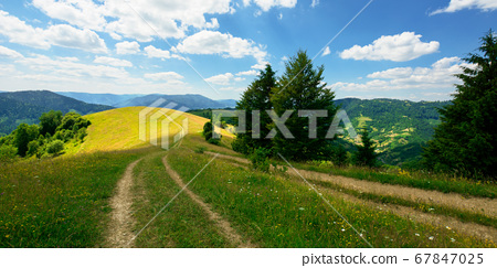 rural landscape on a summer day. dirt road in the 67847025