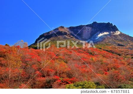 【토 치기 현] 맑은 날의 茶臼岳 단풍 67857881