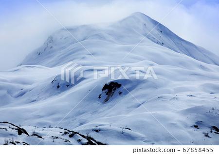 阿拉斯加,冰川,國家公園,冰峰,アラスカ、氷河、国立公園、Alaska, glacier 67858455