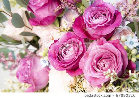 장미꽃송이 67890516