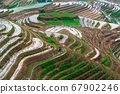 Yaoshan Mountain, Guilin, China hillside rice 67902246
