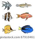 Set of tropical fish 67910461
