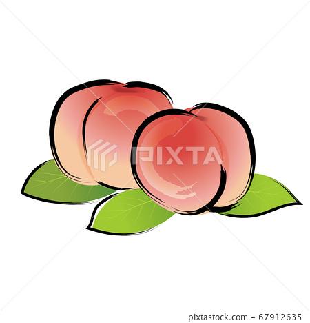 模擬觸摸筆繪畫水彩桃桃插圖水果 67912635