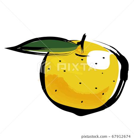 柚子柚子蔬菜水果水果的模擬觸摸筆刷水彩插圖 67912674