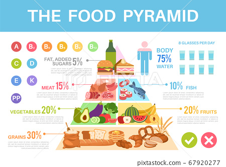 Food pyramid. Nutritional value healthy eating infographics, different groups organic products proteins, fats, carbohydrates vector poster 67920277