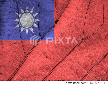 Taiwan flag leaf texture 67924854