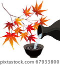 Autumn leaves and sake material vector illustration 67933800