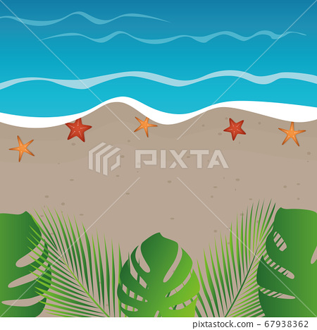 beach background summer holiday design with starfish and palm leaves 67938362
