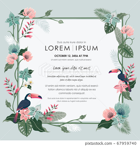 Vector illustration frame of tropical flowers with birds. Design for banner, poster, card, invitation and scrapbook 67959740