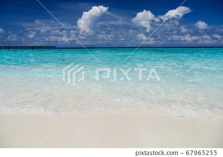 Maldives beach 67965255