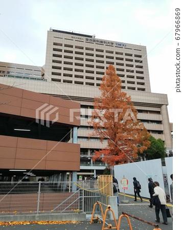 Tokyo Medical and Dental University 67966869
