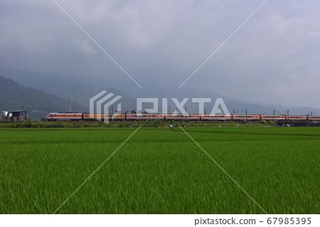 火車,水稻田,農村,鄉村景觀 67985395