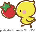 병아리와 딸기 67987951