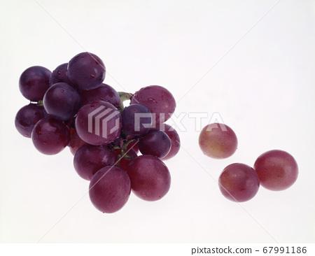 新鮮葡萄水果 67991186