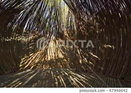 竹子建築物內部的自然光 67998642