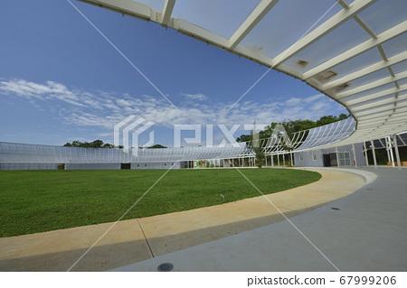 運動場的草坪和透光的玻璃建築物 67999206
