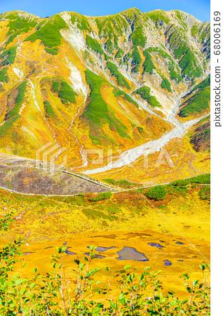 秋天的室堂壯麗景色和美麗的秋天色彩[富山縣] 68006169
