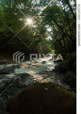 초여름의 청류 기쿠치 계곡에 폭포의 풍경 68018550