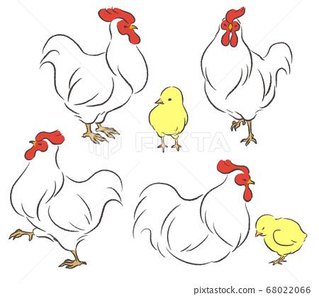 닭과 병아리의 일러스트 세트 68022066