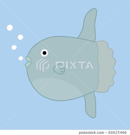 Sunfish 68025466