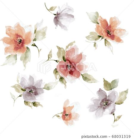 色彩豐富的花卉素材組合和設計元素 68031319