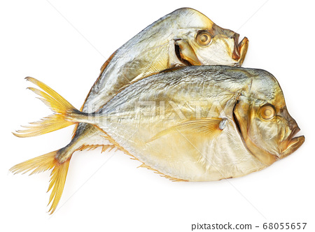 Vomer fish on white isolated background. The view 68055657