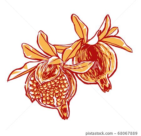 잎 함께 익은 석류 열매 붓 그리기 · 2 색 칠 68067889
