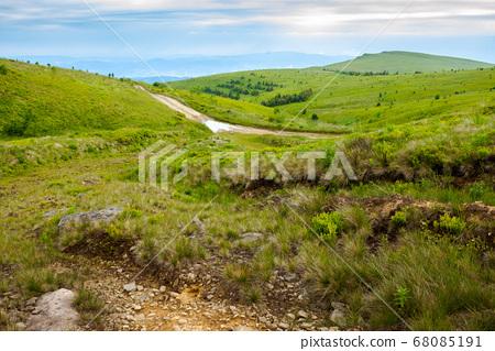 mountain road through grassy meadow. wonderful 68085191