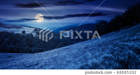 mountain landscape at night. trees on the meadow 68085202