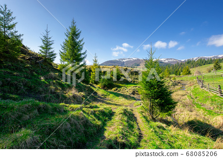 rural landscape in mountains. beautiful green 68085206