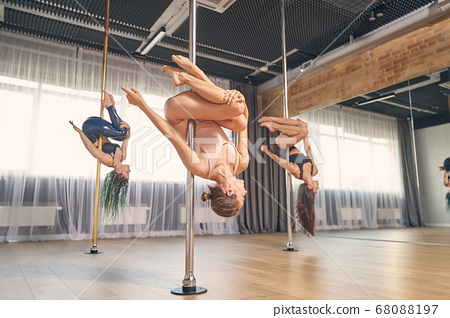 Group of charming female dancers performing pole dance tricks 68088197