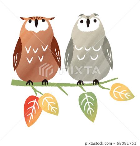 秋季水彩貓頭鷹棲息在樹上 68091753