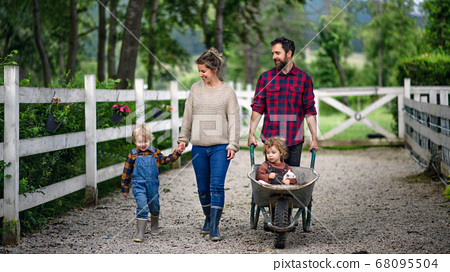 Portrait of family with small children walking on farm. 68095504