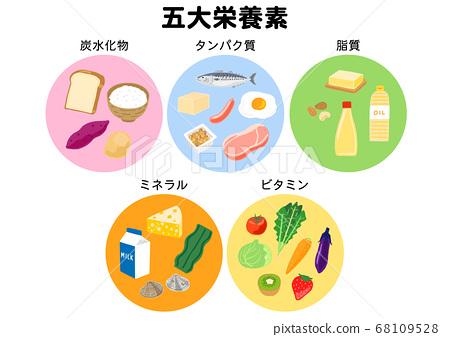 Five major nutrients: carbohydrates, proteins, lipids, minerals, vitamins 68109528