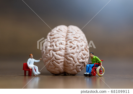 Miniature people , Scientist observing and discussing about human brain  68109911