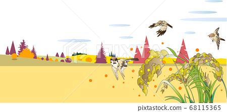 벼 이삭이 여무는 가을의 시골 풍경 68115365