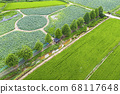 利川市,城城面,城河水庫,無人機攝影,蓮花館,蓮花田,橋路 68117648