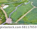 利川市,城城面,城河水庫,無人機攝影,蓮花館,蓮花田,橋路 68117650