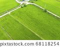 利川市,城城面,城河水庫,農吉,流,水稻,稻田,道路,電桿,無人機射擊 68118254