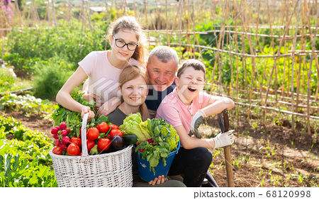 Family posing in garden with picked vegetables 68120998