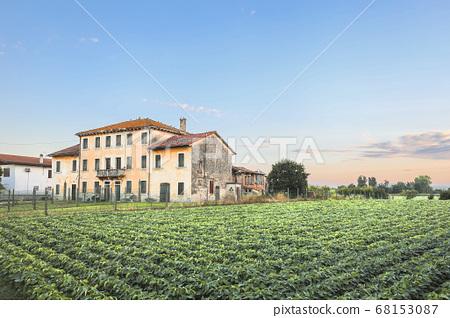 意大利雙子座村景觀 68153087