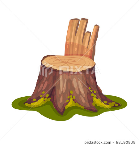 Stump or Tree Stub Covered with Moss as Forest Element Vector Illustration 68190939