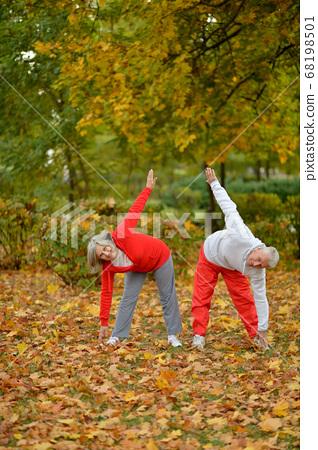 Portrait of fit senior couple exercising in park 68198501