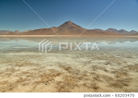 Panoramic view at White Lagoon - South of Bolivia. 68203470