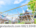 Blue sky wind-bell festival (Obusa Kannon, Nara) 68213048