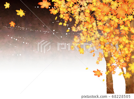 Scenery of fallen leaves (right at night) 68228505