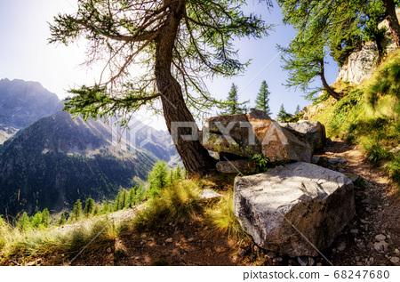 mountain path at dawn 68247680